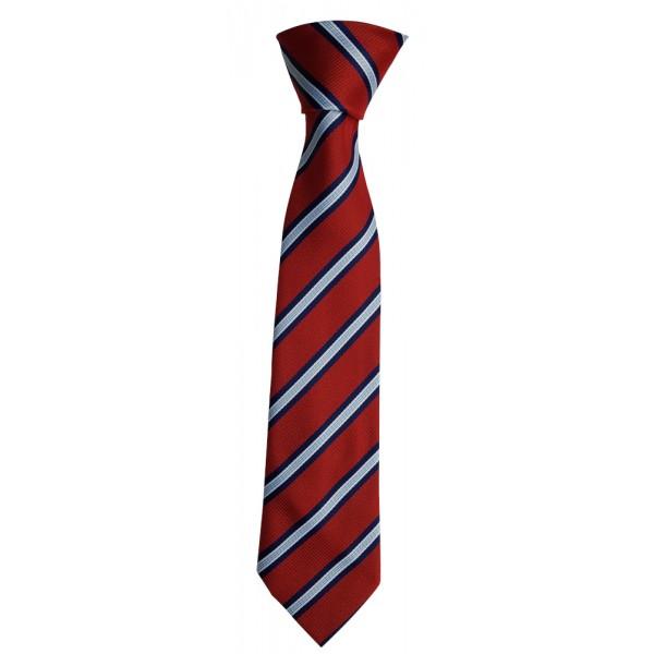 Excel Academy Tie