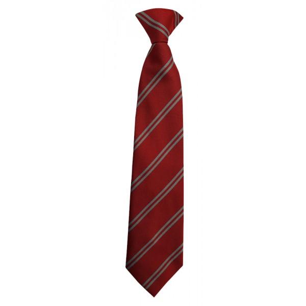 St Anne's Primary Tie
